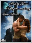 vampire academy spirit bound